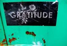 Tarif - Gratitude