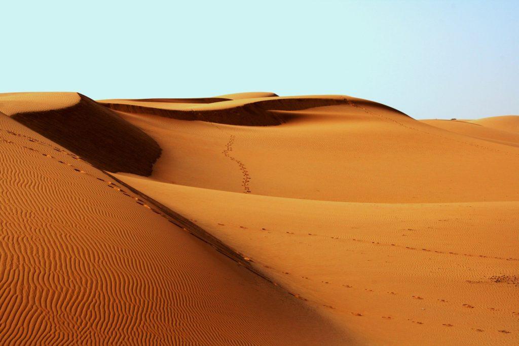 Traversée Initiatique du Desert