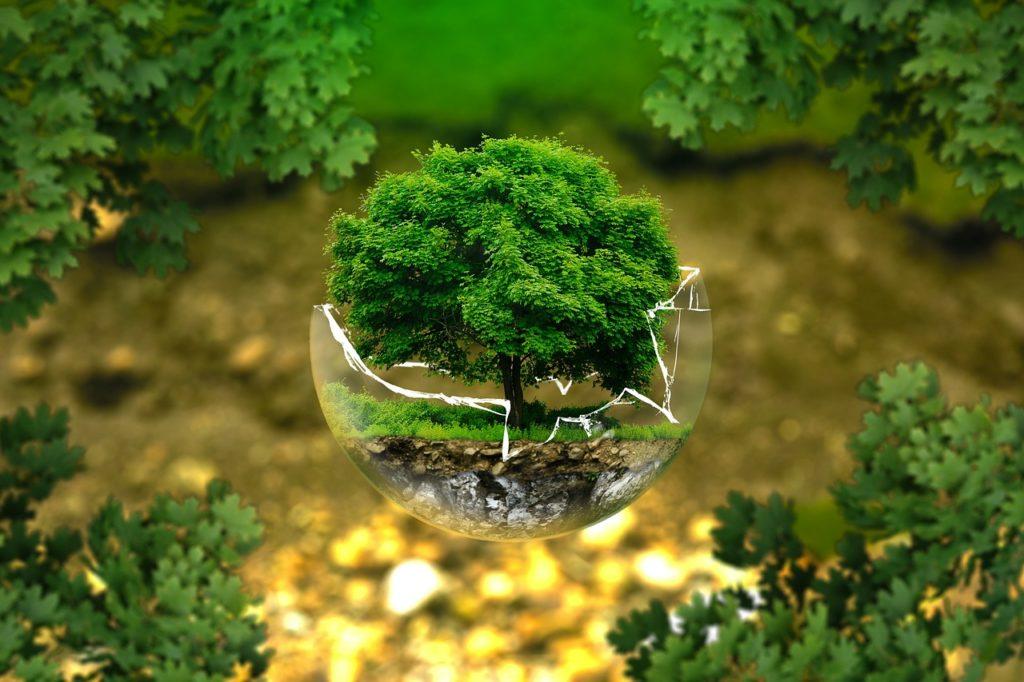 Préservation Ressources Mère Terre